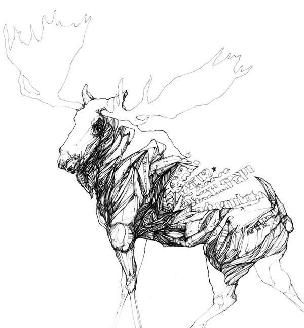 drawing-inspiration-behance-chow-martin-animal