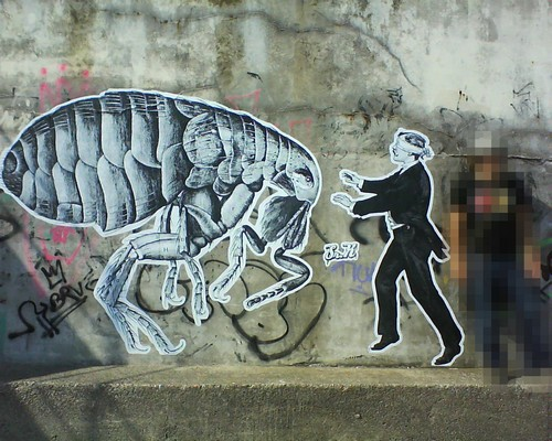 graffiti_inspiration_sir_x_spain