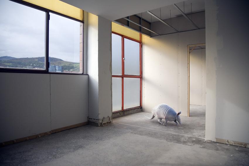 photography-inspiration-mikel-uribetxeberria-animal1