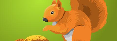 vector-freebies-squirrel