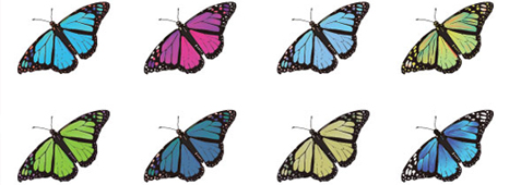 easter-freebies-butterfly-vector
