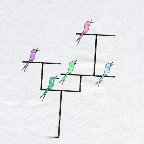 illustration-inspiration-matt-lee-birds