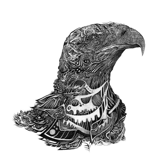 illustration-inspiration-ehren-salazar-eagle