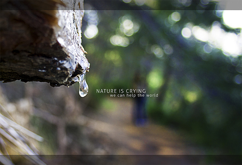 photography-inspiration-manuel-rodriguez-sanchez-nature-is-crying