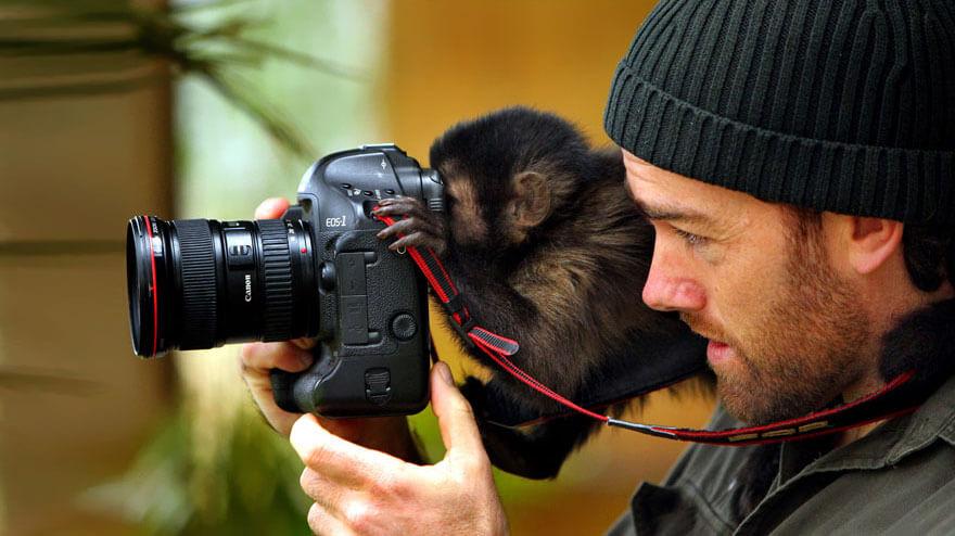 Monkey and a camera